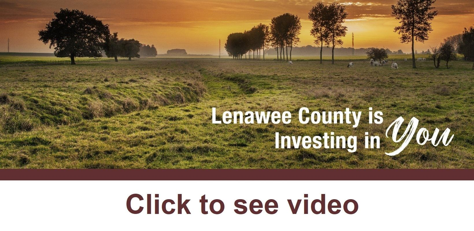 lenawee county mi official website