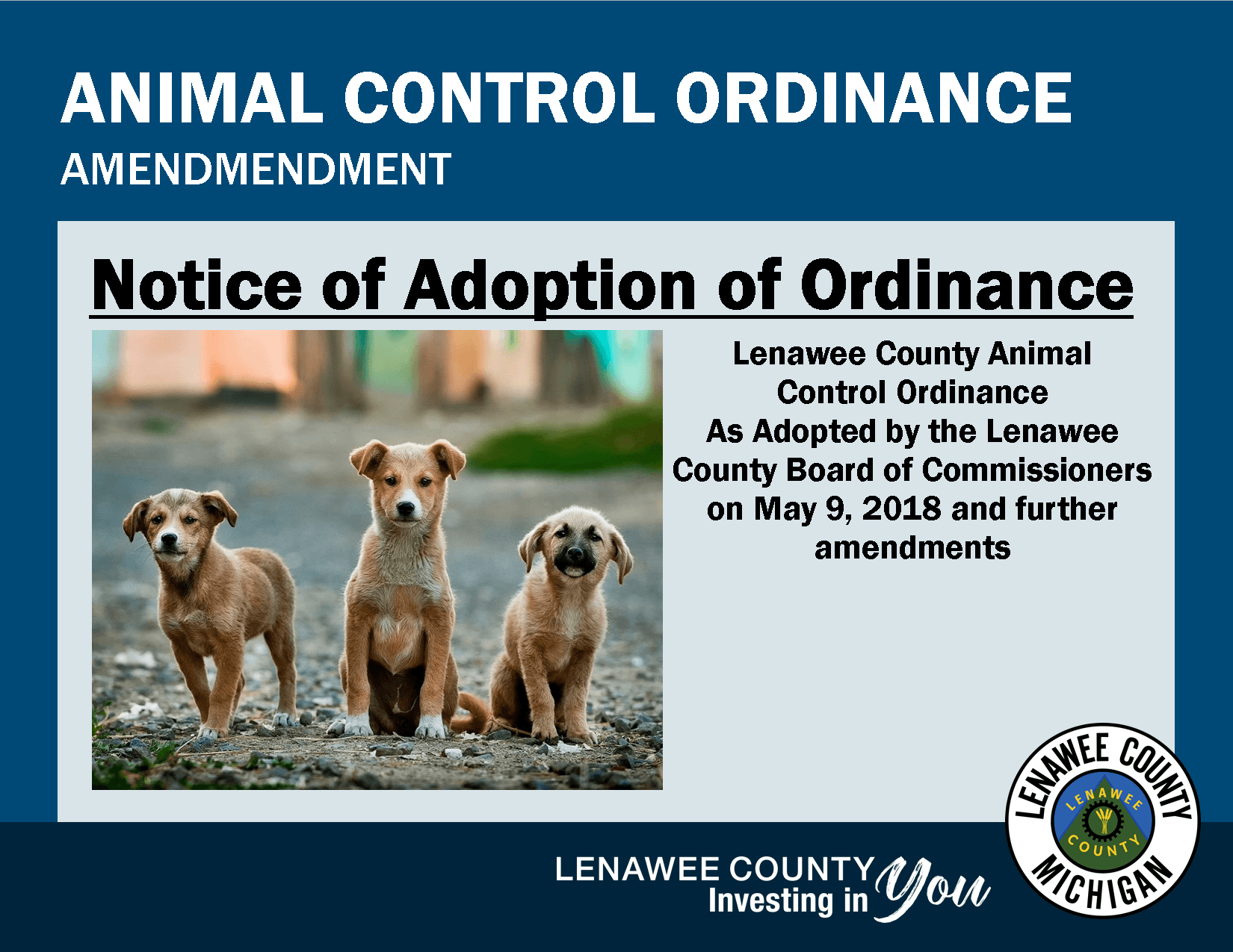 Three puppies looking at you - Animal Control Ordinance Notice