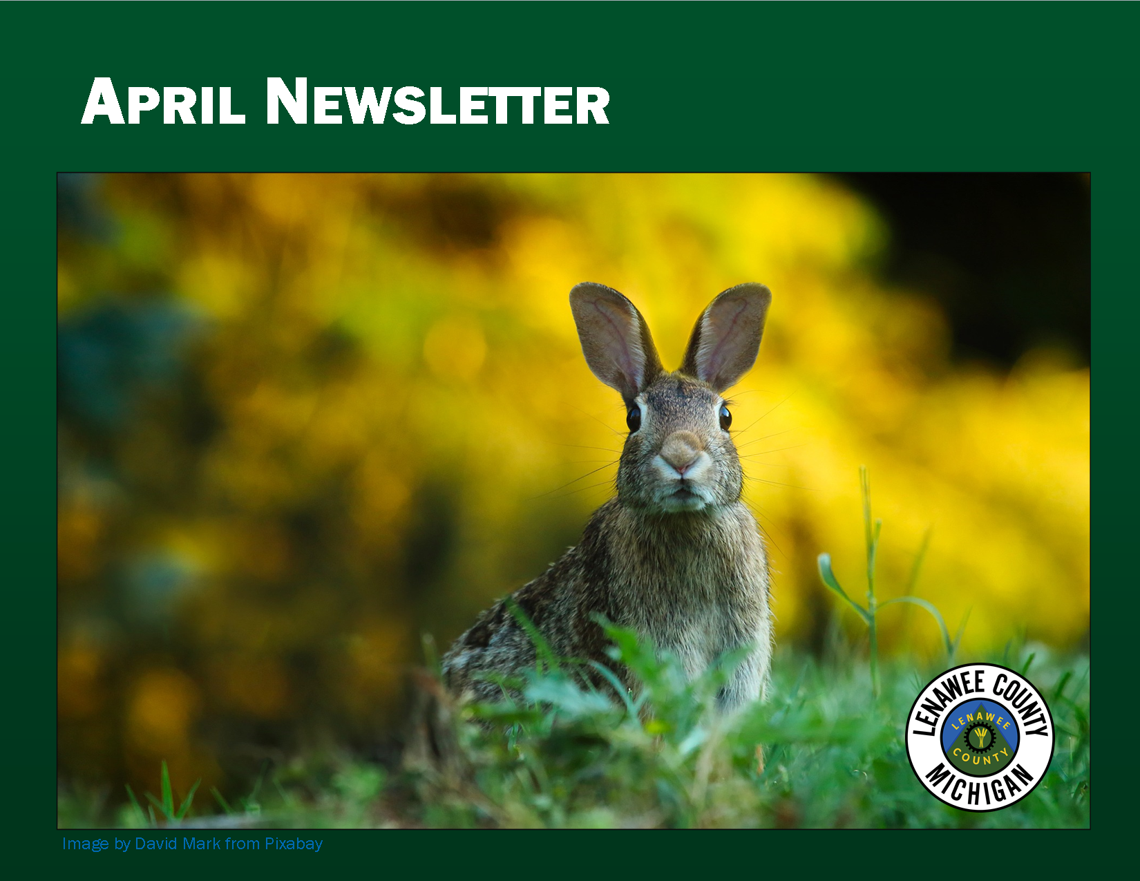 April Newsletter2