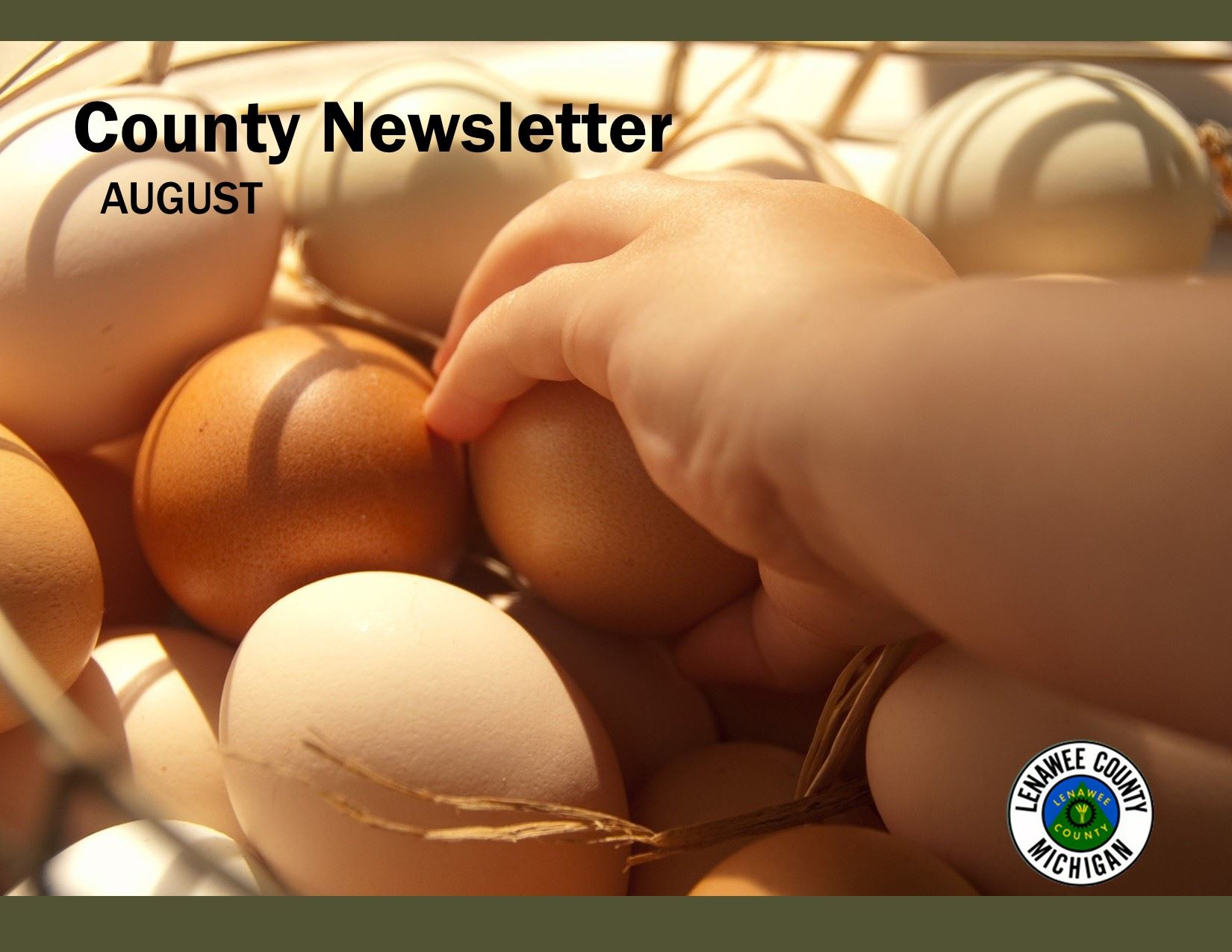 NEWSLETTER COVER AUG