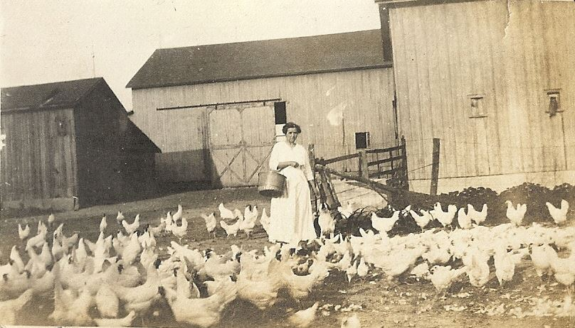farmer from turn of the century in Lenawee County feeding chickens