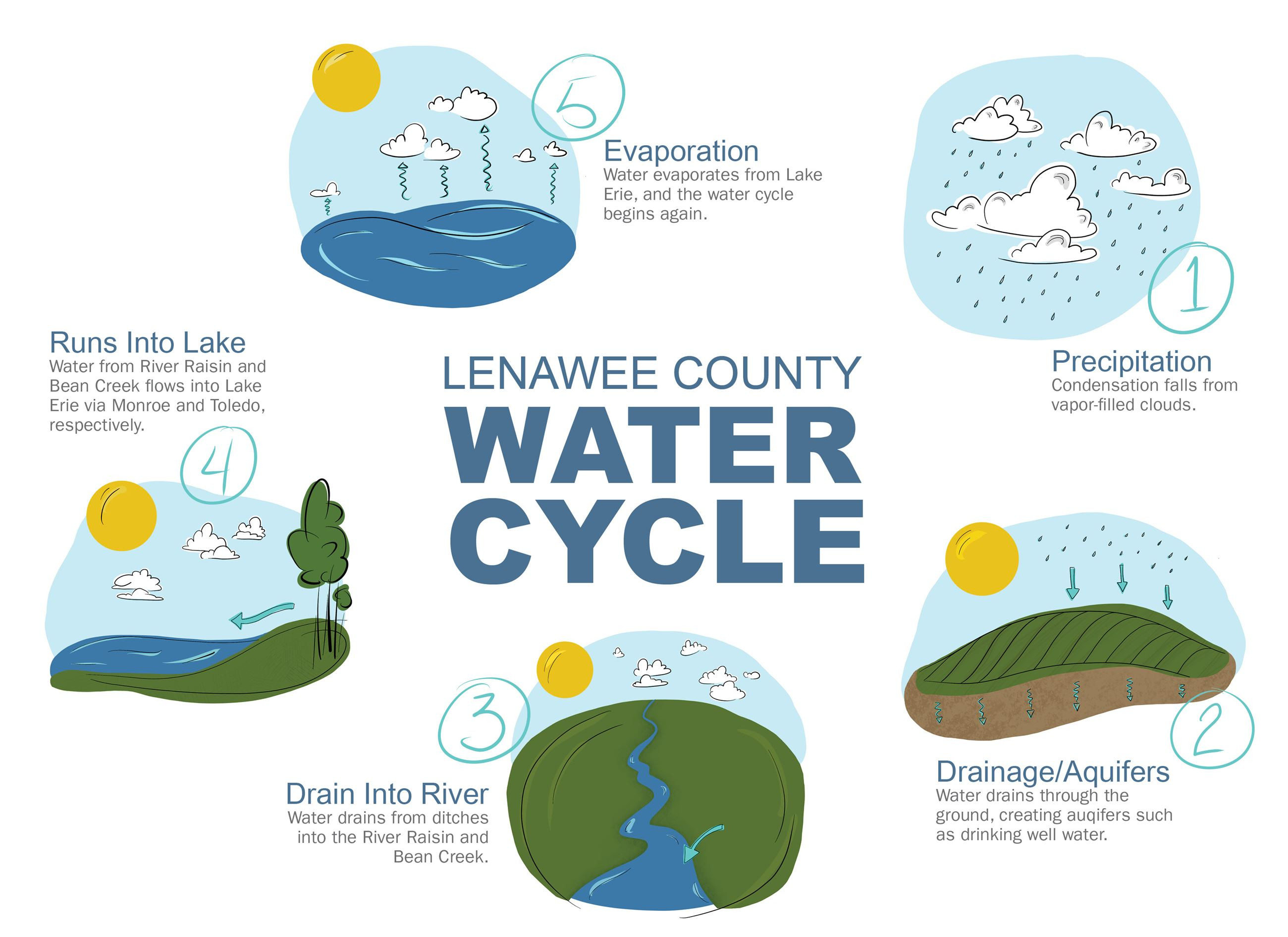 illustration of water cycle in Lenawee County
